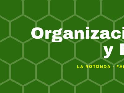 Organizaciones y Redes